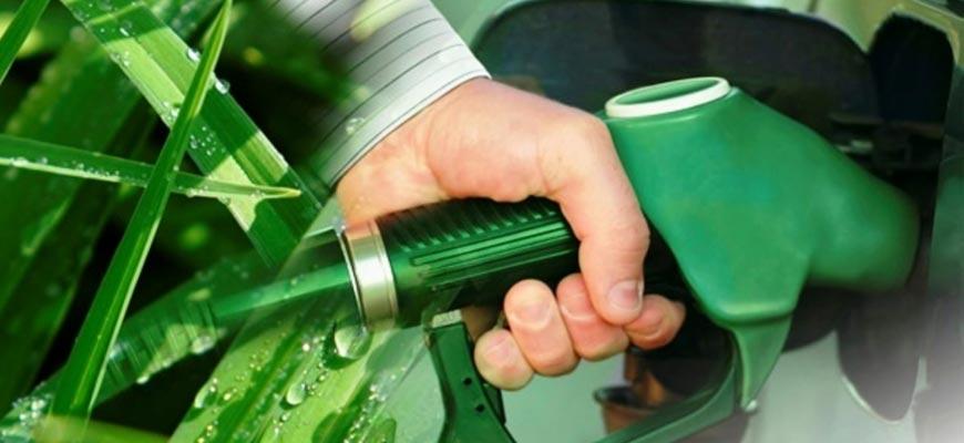 Биодизель-заправка