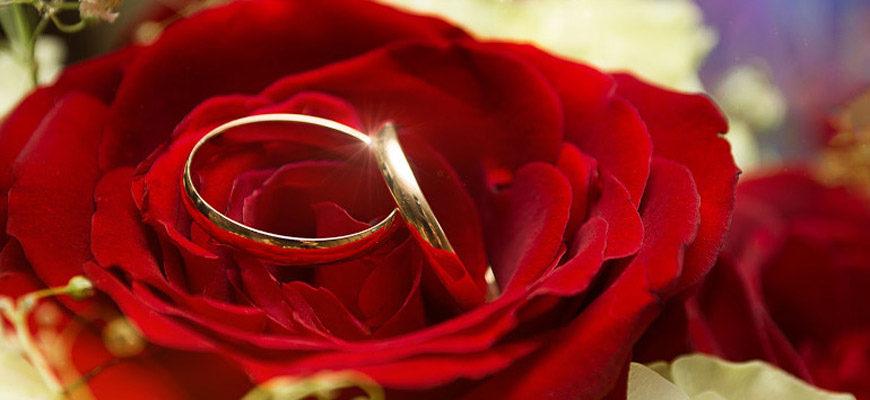 День брачных агентств