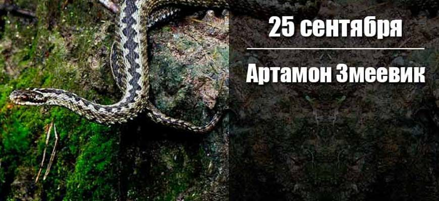 Артамон Змеевик