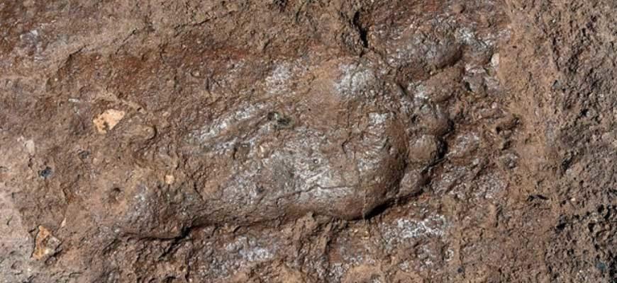 Отпечаток ноги древнего человека